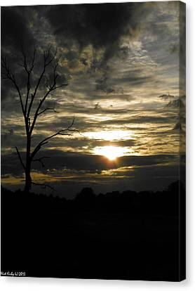 Sunset Of Life Canvas Print