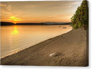 Olympic National Park Canvas Print - Sunset Olympic Peninsula, Washington by Tom Norring