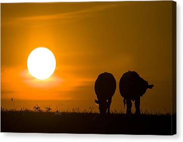 Canvas Print featuring the photograph Sunset On The Flint Hills by Scott Bean
