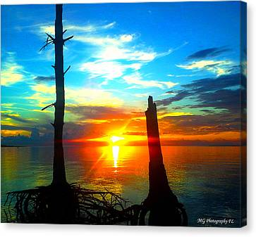 Sunset On The Island Canvas Print by Marty Gayler