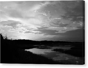 Sunset On The Marsh Canvas Print by Thomas Leon