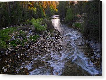 Sunset On The Merced Canvas Print by Lynn Bauer