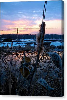 Canvas Print featuring the photograph Sunset On The Pond by Zafer Gurel