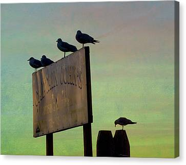 Sunset On The Sign Canvas Print