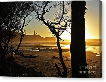 Sunset On Yaquina Head One Canvas Print