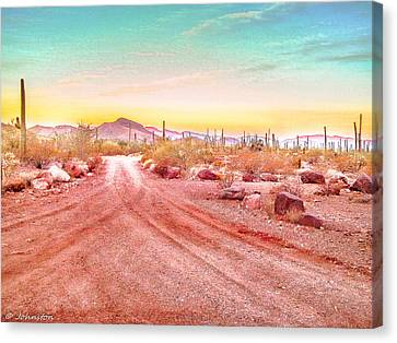 Sunset Organ Pipe Cactus National Monument Canvas Print by Bob and Nadine Johnston