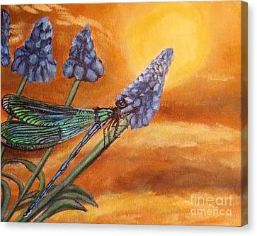 Summer Sunset Over A Dragonfly Canvas Print by Kimberlee Baxter