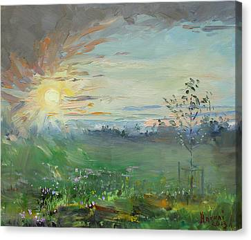Fields Of Flowers Canvas Print - Sunset Over A Field Of Wild Flowers by Ylli Haruni