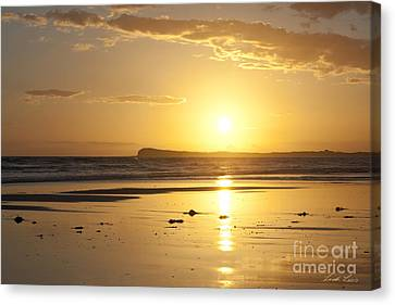 Morn Canvas Print - Sunset Over Barwon Heads by Linda Lees