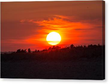 Sunset Over Dead Neck Canvas Print by Allan Morrison