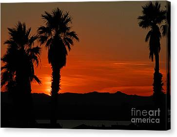 Sunset Over Lake Havaus   Canvas Print