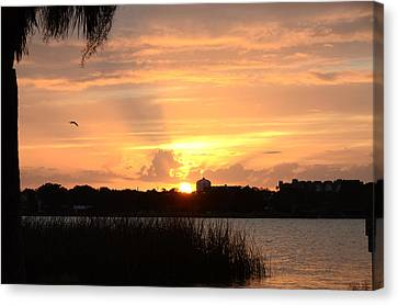 Sunset Over Lake Semniole Canvas Print by Julie Cameron