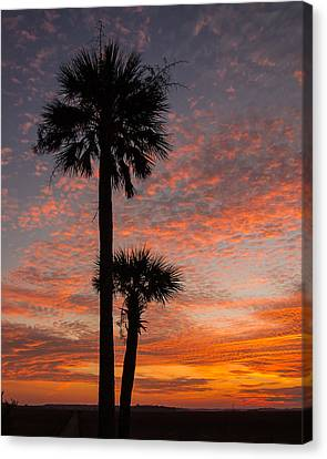 Sunset Over Marsh Canvas Print by Patricia Schaefer