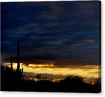 Sunset Over Sonoran Desert Canvas Print by Jon Van Gilder