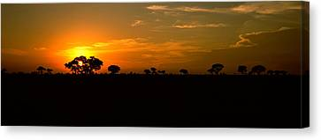 Sunset Over The Savannah Plains, Kruger Canvas Print by Panoramic Images