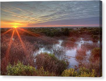 Sunset Over Wetlands At Ocean Shores Canvas Print by Tom Norring