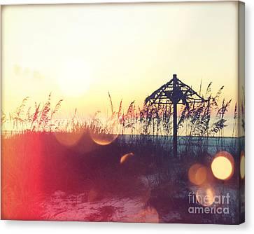 Sunset Palm IIi Canvas Print by Chris Andruskiewicz