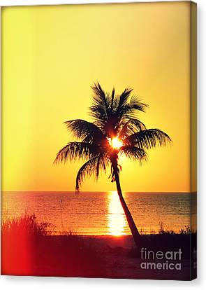 Sunset Palm Photography Light Leaks Canvas Print by Chris Andruskiewicz
