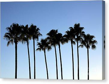 Canvas Print featuring the photograph Sunset Palms by Chris Thomas