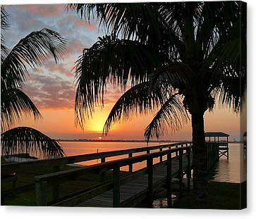 Canvas Print featuring the photograph Sunset Palms by Elaine Franklin
