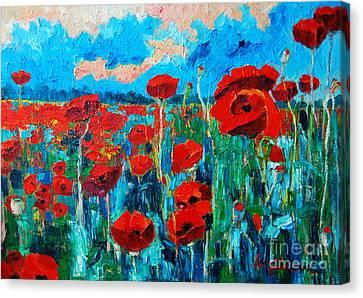 Sunset Poppies Canvas Print by Ana Maria Edulescu