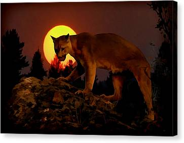 Sunset Predator Canvas Print by Wade Aiken