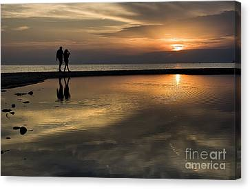 Sunset Reflection And Silhouettes Canvas Print by Daliana Pacuraru