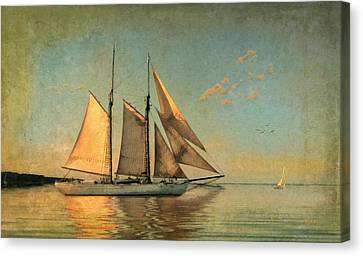 Cape Cod Canvas Print - Sunset Sail by Michael Petrizzo