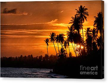 Sunset Salinas Puerto Rico Canvas Print