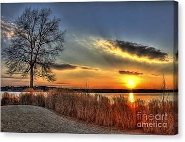 Sunset Sawgrass On Lake Oconee Canvas Print by Reid Callaway