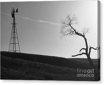 Sunset Silence Bw Canvas Print