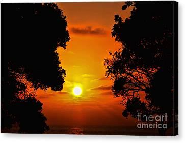 Sunset Silhouette By Diana Sainz Canvas Print by Diana Sainz