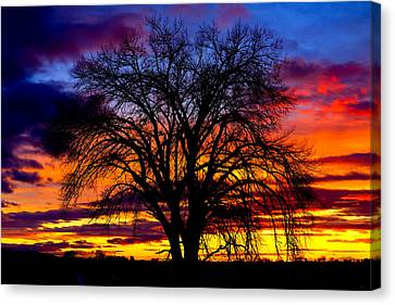 Canvas Print featuring the photograph Sunset Silhouette by Greg Norrell