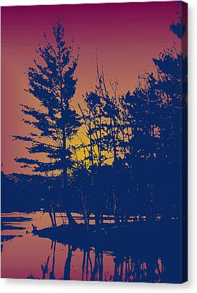 Sunset Silhouette Canvas Print by Larry Capra