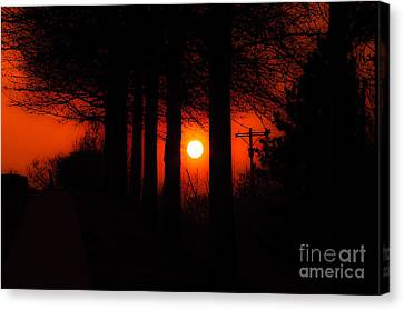 Sunset Silhouette Painterly Canvas Print by Andee Design