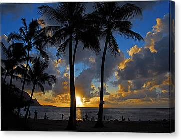 Sunset Silhouettes Canvas Print by Lynn Bauer