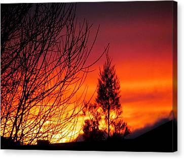 Sunset Sky . Canvas Print by Joyce Woodhouse