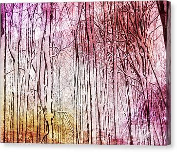Sunset Snow Twigs Canvas Print