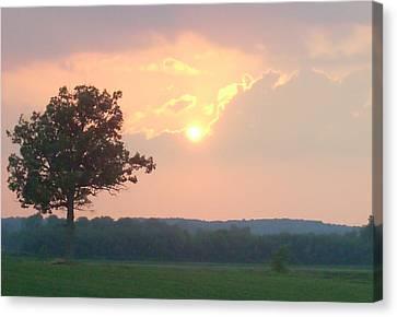Sunset Sorbet Canvas Print