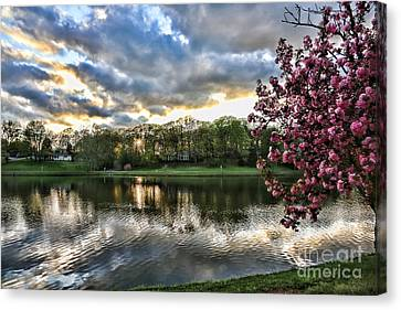 Sunset Southern  Canvas Print by Chuck Kuhn