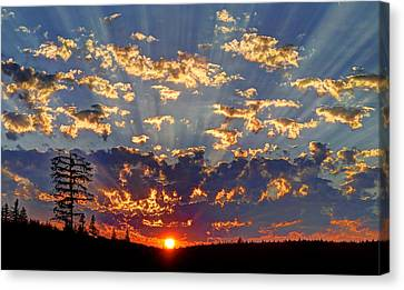 Sunset Spectacle Canvas Print by Peter Mooyman