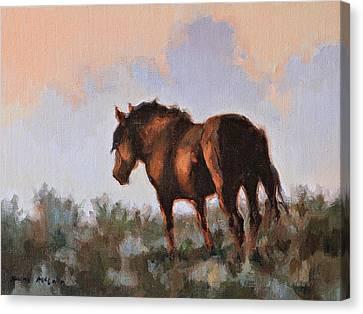 Sunset Stallion Canvas Print by Karen McLain