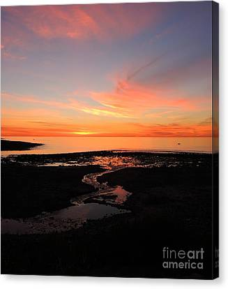 Field River, Hallett Cove Canvas Print