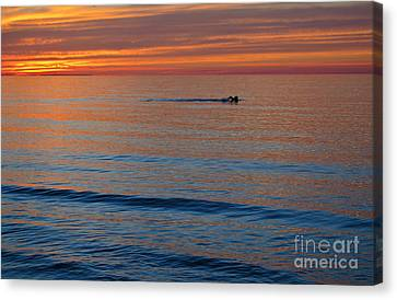 Canvas Print featuring the photograph Sunset Swimmer by Maria Janicki
