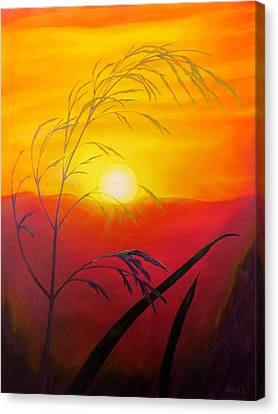 Sunset Through The Grass Canvas Print by Zina Stromberg