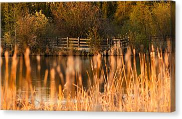 Sunset Tranquility Canvas Print by Valerie Pond