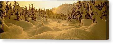 Sunset, Turnagain Pass, Alaska, Usa Canvas Print