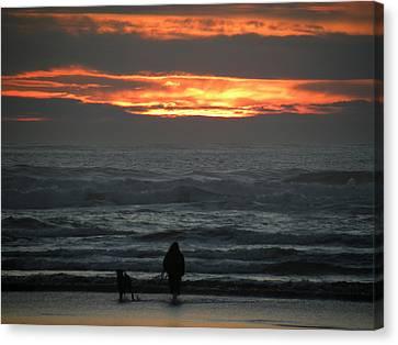 Sunset Walk Canvas Print by David Quist