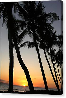 Canvas Print - Sunset West Coast Of Maui by Robert Lozen