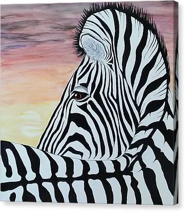 Steven White Canvas Print - Sunset Zebra by Steven White